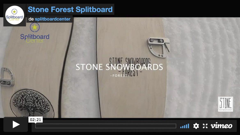 portada stone forest
